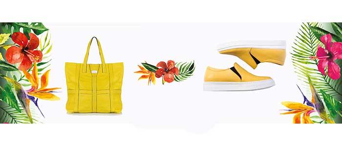 Дамски обувки и чанти - LadyZoneBg